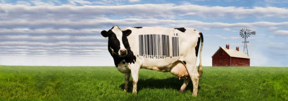Filmtips! Food Inc.