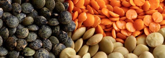 Linser – billigt, proteinrikt, enkelt och gott