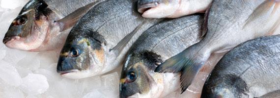 Källor till omega-3